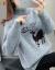 Elycra裏ボアフィット2020秋冬新着レディディ韓国服ファンシーショレンディファッションはルーズスタイルの外にラウドネルを着ます。